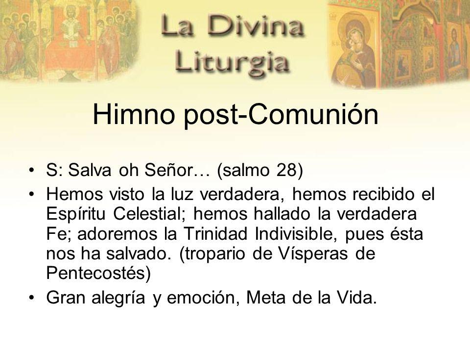 Himno post-Comunión S: Salva oh Señor… (salmo 28) Hemos visto la luz verdadera, hemos recibido el Espíritu Celestial; hemos hallado la verdadera Fe; a