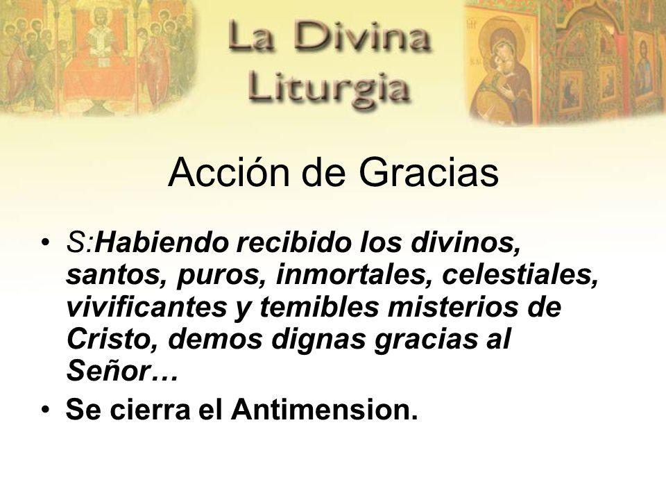 Acción de Gracias S:Habiendo recibido los divinos, santos, puros, inmortales, celestiales, vivificantes y temibles misterios de Cristo, demos dignas g