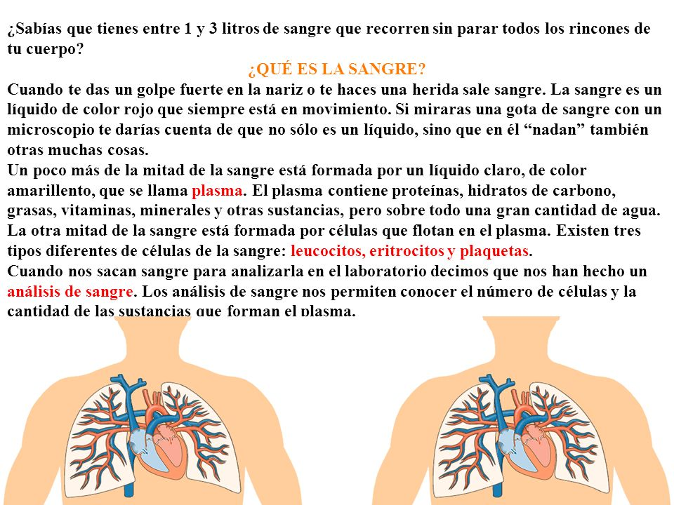 Eritrocitos Los eritrocitos también se llaman glóbulos rojos o hematíes.
