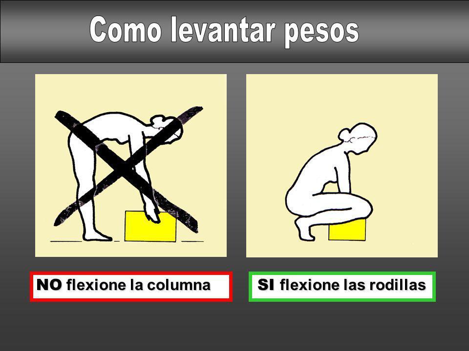 NO flexione la columna SI flexione las rodillas