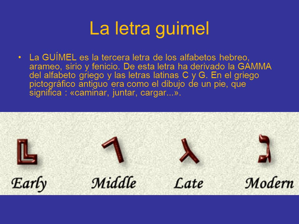 La letra guimel La GUÍMEL es la tercera letra de los alfabetos hebreo, arameo, sirio y fenicio. De esta letra ha derivado la GAMMA del alfabeto griego