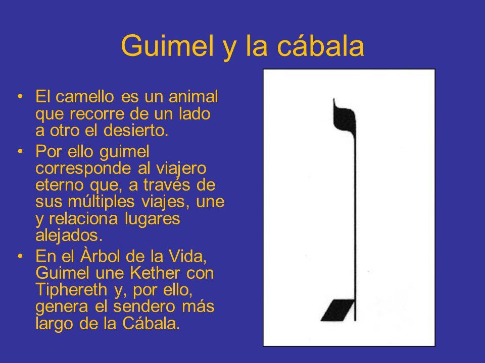 Guimel y la cábala El camello es un animal que recorre de un lado a otro el desierto. Por ello guimel corresponde al viajero eterno que, a través de s