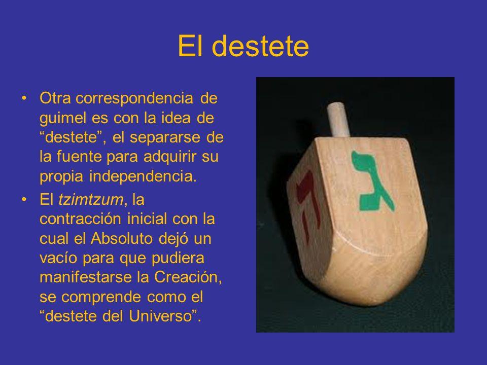 El destete Otra correspondencia de guimel es con la idea de destete, el separarse de la fuente para adquirir su propia independencia. El tzimtzum, la