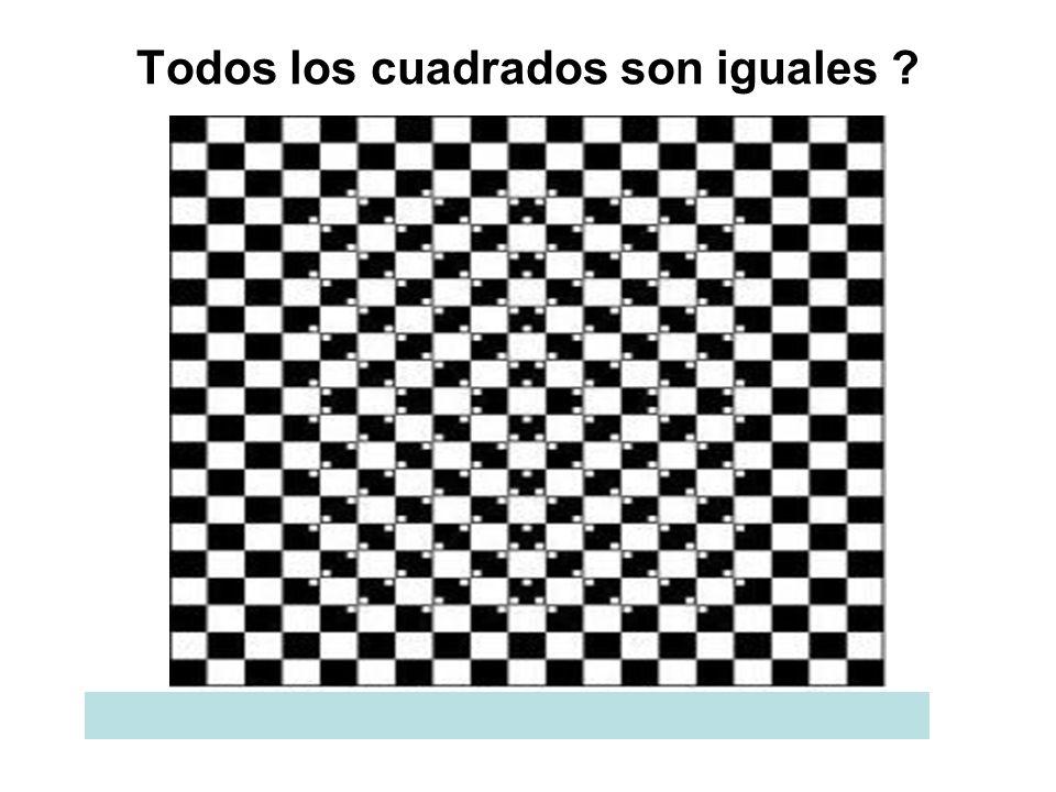 Mire el círculo del medio Se mueven las barras ?