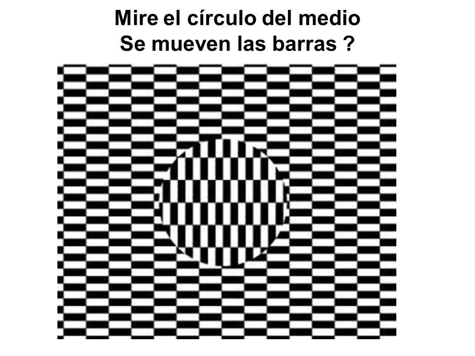 Mire la figura atentamente Cuantos círculos negros y blancos ve entre cada cuadrado ?