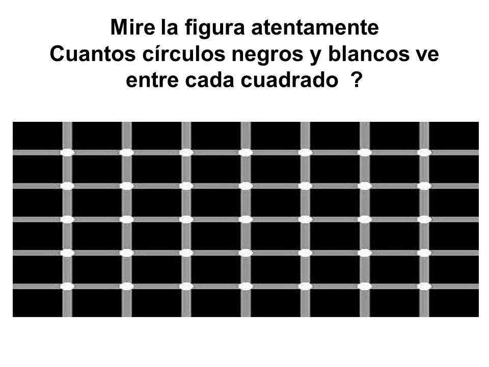 Mire muy atentamente la próxima figura sin quitar la mirada y concentrándose en los cuatro puntos del centro.