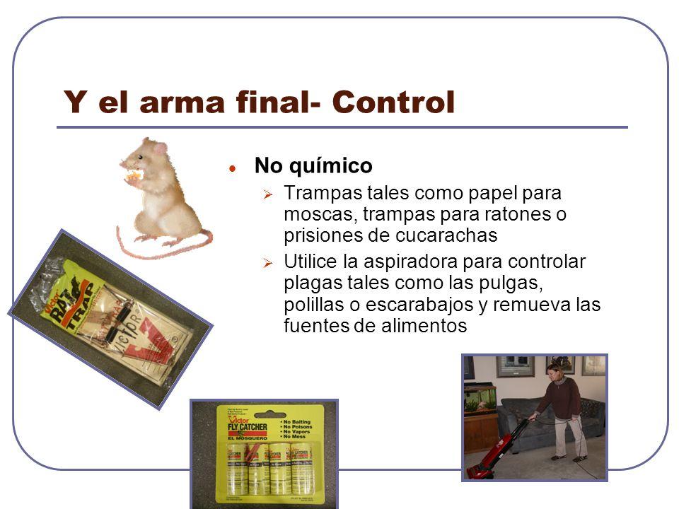 Y el arma final- Control No químico Trampas tales como papel para moscas, trampas para ratones o prisiones de cucarachas Utilice la aspiradora para co