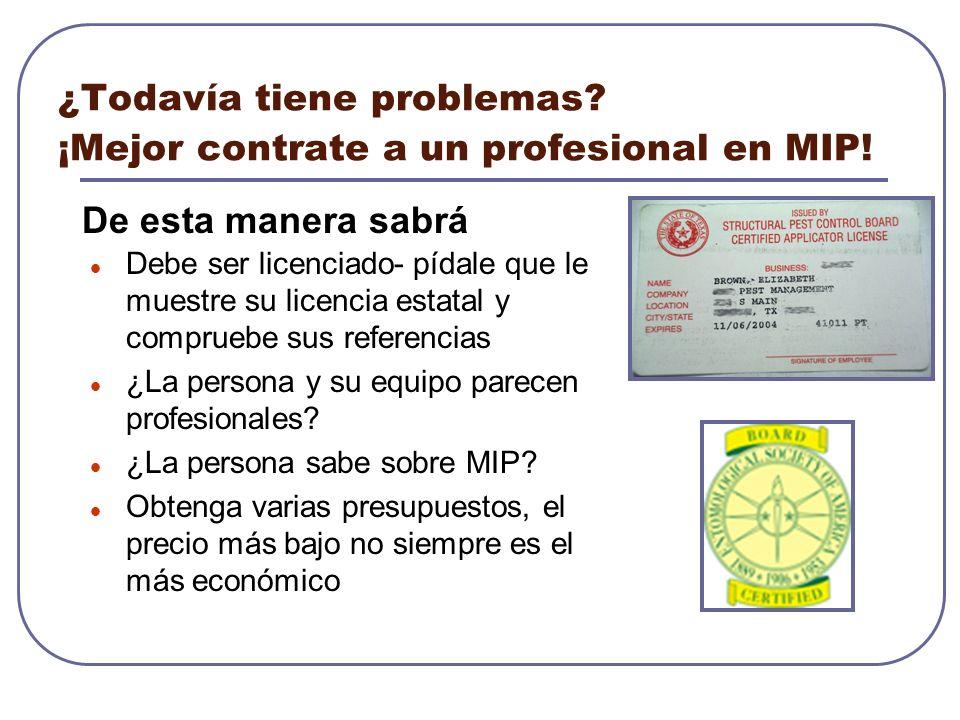 ¿Todavía tiene problemas? ¡Mejor contrate a un profesional en MIP! Debe ser licenciado- pídale que le muestre su licencia estatal y compruebe sus refe