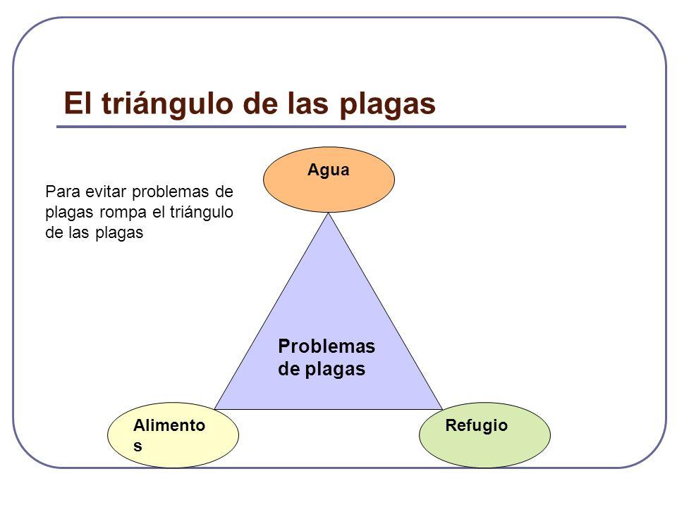 El triángulo de las plagas Problemas de plagas Alimento s Agua Refugio Para evitar problemas de plagas rompa el triángulo de las plagas