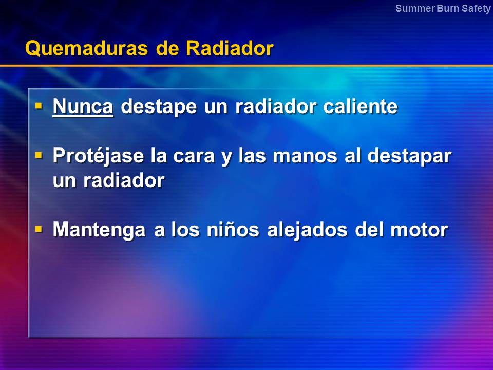 Summer Burn Safety Quemaduras de Radiador Nunca destape un radiador caliente Protéjase la cara y las manos al destapar un radiador Mantenga a los niños alejados del motor Nunca destape un radiador caliente Protéjase la cara y las manos al destapar un radiador Mantenga a los niños alejados del motor