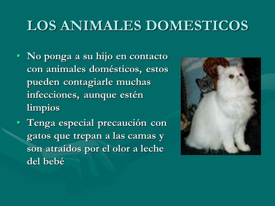 LOS ANIMALES DOMESTICOS No ponga a su hijo en contacto con animales domésticos, estos pueden contagiarle muchas infecciones, aunque estén limpiosNo po