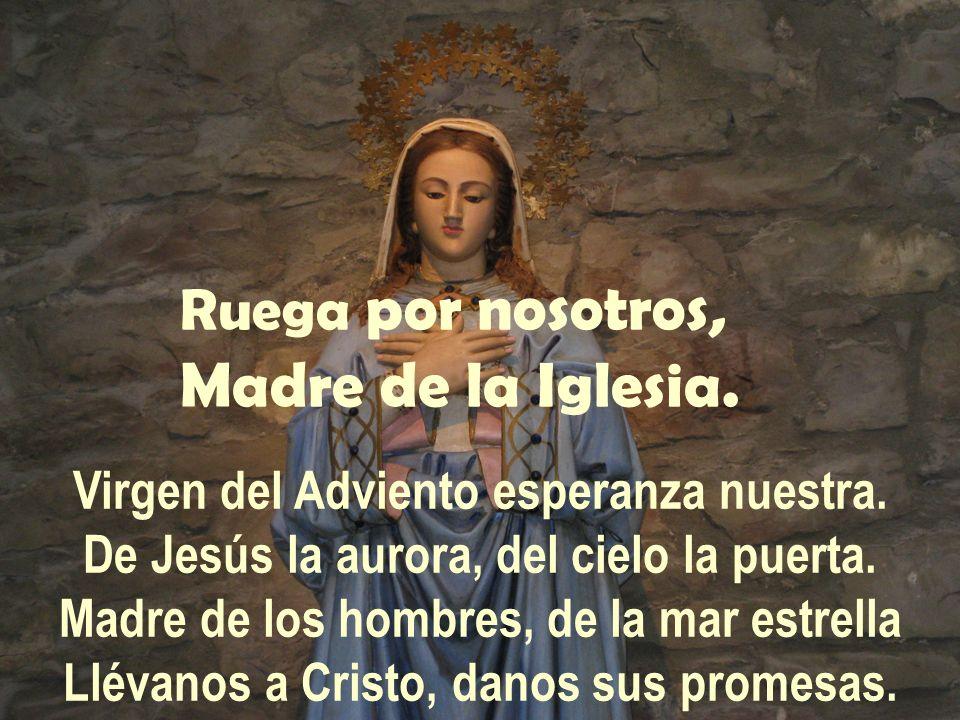 Ruega por nosotros, Madre de la Iglesia. Virgen del Adviento esperanza nuestra. De Jesús la aurora, del cielo la puerta. Madre de los hombres, de la m