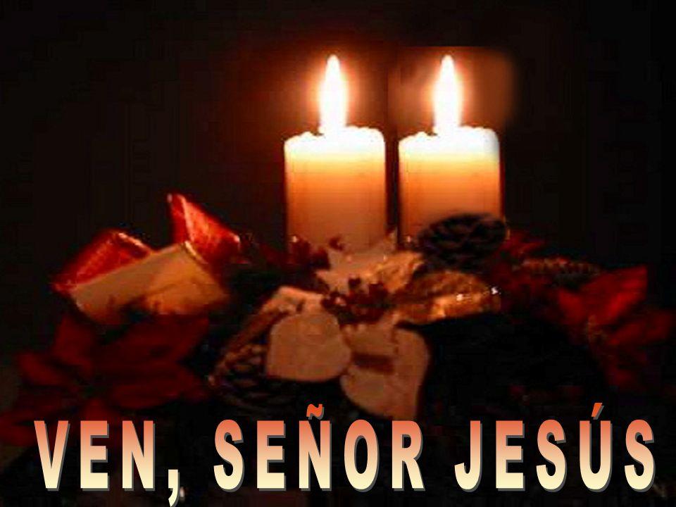 Reconozcamos nuestra debilidad y celebremos llenos de esperanza la misericordia de Dios