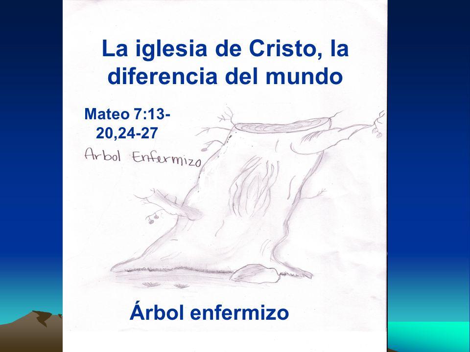 La iglesia de Cristo, la diferencia del mundo Árbol enfermizo Mateo 7:13- 20,24-27