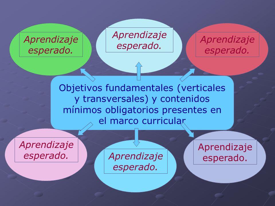 Objetivos fundamentales (verticales y transversales) y contenidos mínimos obligatorios presentes en el marco curricular Aprendizaje esperado.