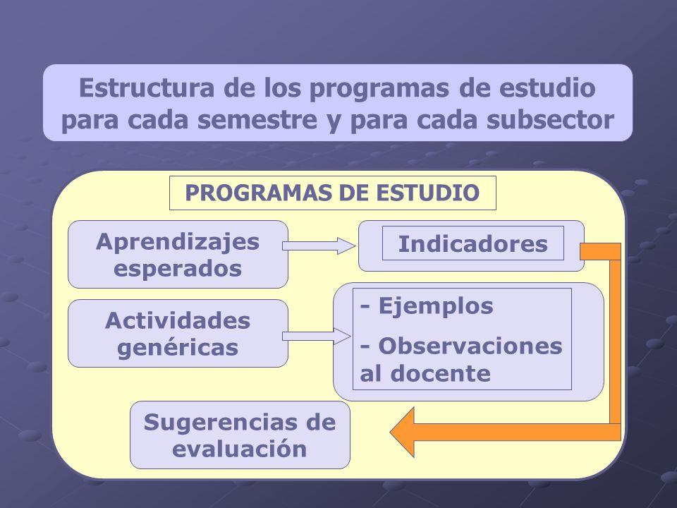 PROGRAMAS DE ESTUDIO Aprendizajes esperados Indicadores Actividades genéricas - Ejemplos - Observaciones al docente Sugerencias de evaluación Estructura de los programas de estudio para cada semestre y para cada subsector