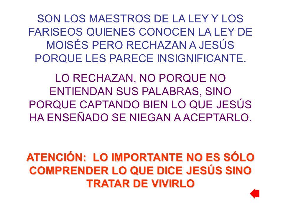 SON LOS MAESTROS DE LA LEY Y LOS FARISEOS QUIENES CONOCEN LA LEY DE MOISÉS PERO RECHAZAN A JESÚS PORQUE LES PARECE INSIGNIFICANTE. LO RECHAZAN, NO POR