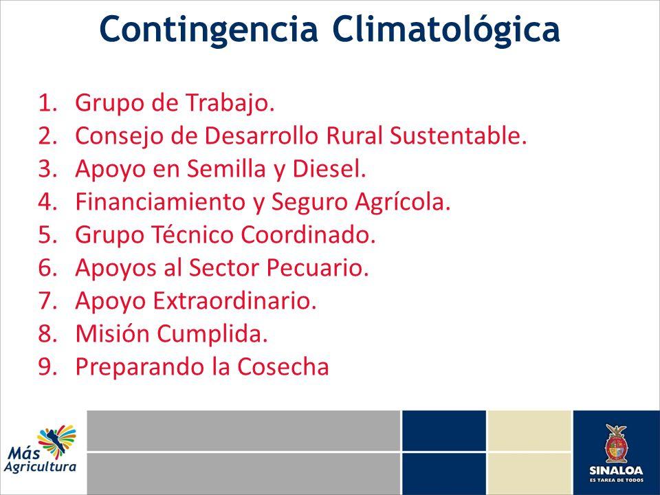 Contingencia Climatológica 1.Grupo de Trabajo. 2.Consejo de Desarrollo Rural Sustentable. 3.Apoyo en Semilla y Diesel. 4.Financiamiento y Seguro Agríc