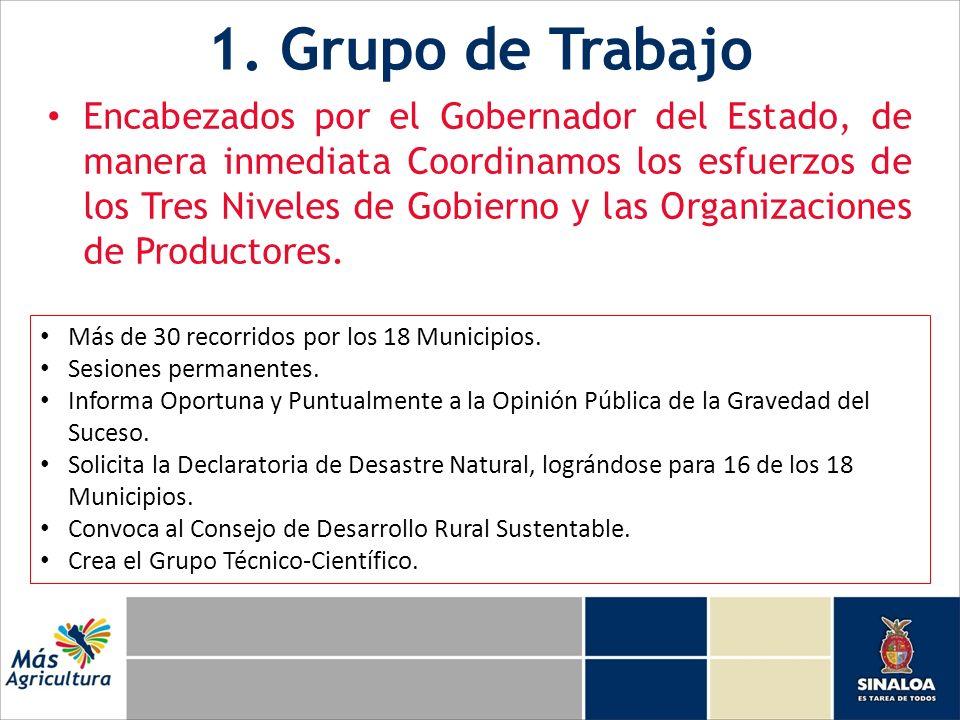 1. Grupo de Trabajo Encabezados por el Gobernador del Estado, de manera inmediata Coordinamos los esfuerzos de los Tres Niveles de Gobierno y las Orga