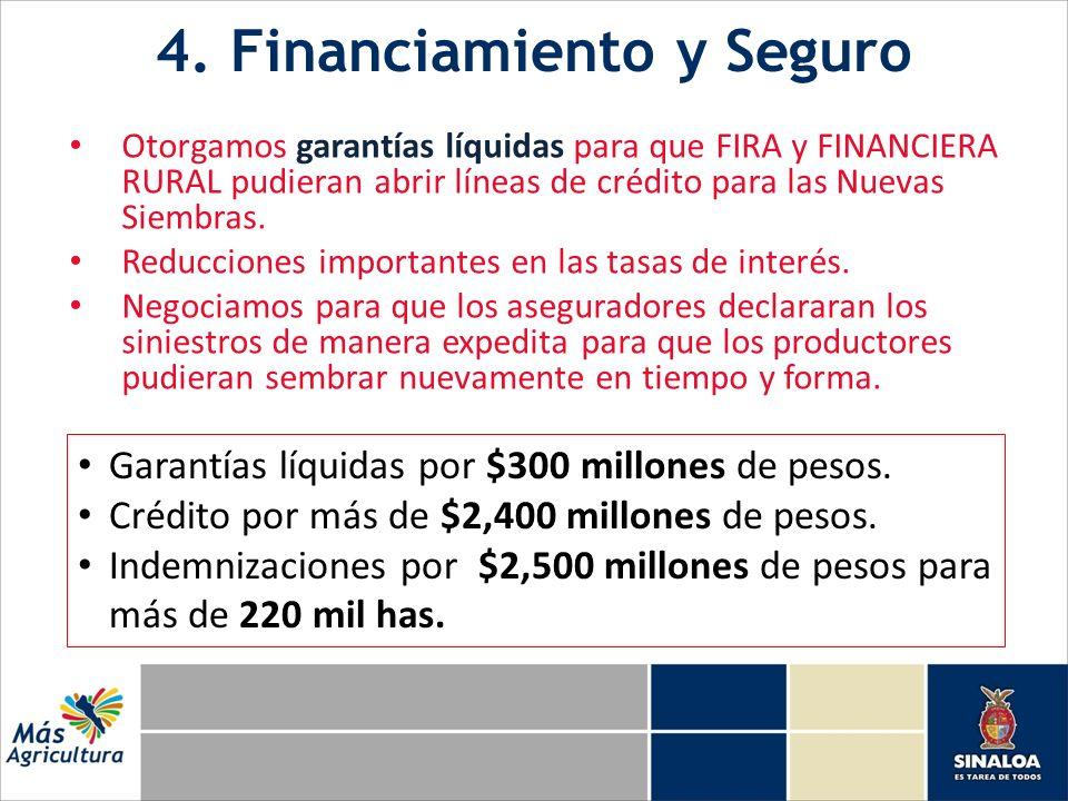 4. Financiamiento y Seguro Otorgamos garantías líquidas para que FIRA y FINANCIERA RURAL pudieran abrir líneas de crédito para las Nuevas Siembras. Re