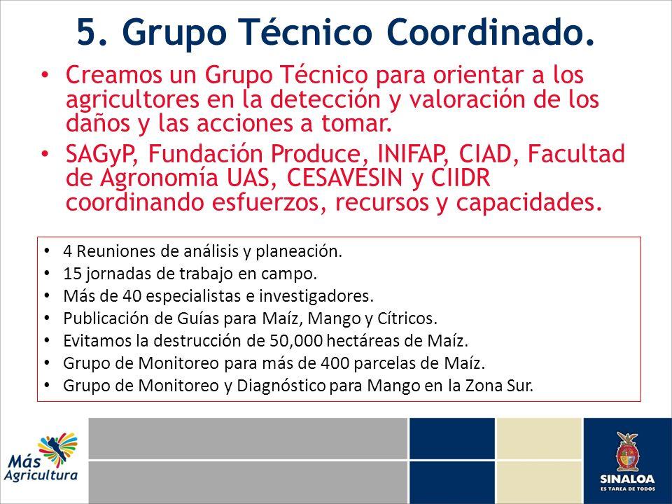5. Grupo Técnico Coordinado. Creamos un Grupo Técnico para orientar a los agricultores en la detección y valoración de los daños y las acciones a toma