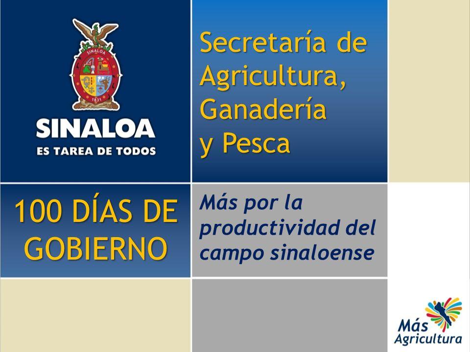 Secretaría de Agricultura, Ganadería y Pesca Más por la productividad del campo sinaloense 100 DÍAS DE GOBIERNO