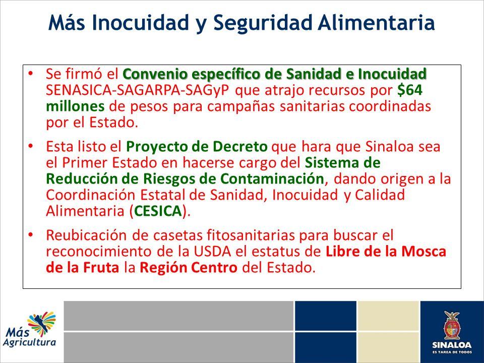 Más Inocuidad y Seguridad Alimentaria Convenio específico de Sanidad e Inocuidad Se firmó el Convenio específico de Sanidad e Inocuidad SENASICA-SAGARPA-SAGyP que atrajo recursos por $64 millones de pesos para campañas sanitarias coordinadas por el Estado.