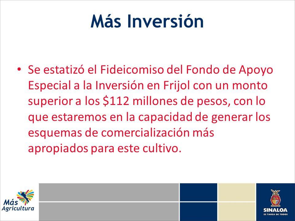 Más Inversión Se estatizó el Fideicomiso del Fondo de Apoyo Especial a la Inversión en Frijol con un monto superior a los $112 millones de pesos, con lo que estaremos en la capacidad de generar los esquemas de comercialización más apropiados para este cultivo.