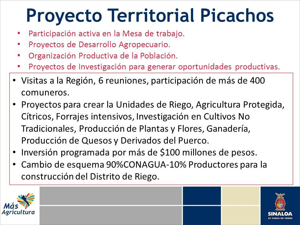 Proyecto Territorial Picachos Participación activa en la Mesa de trabajo. Proyectos de Desarrollo Agropecuario. Organización Productiva de la Població