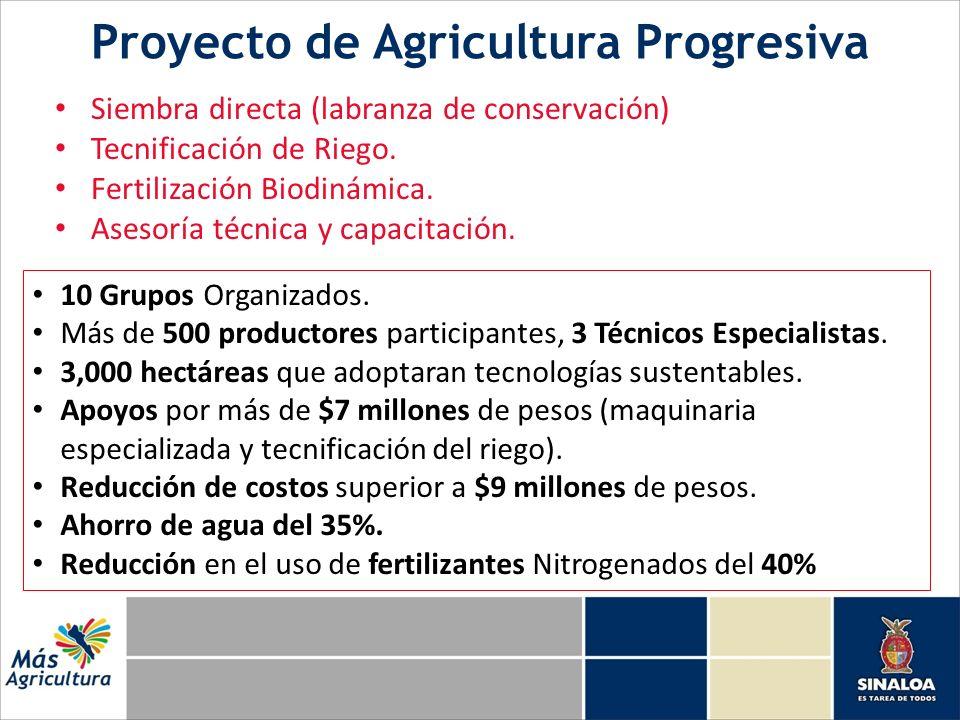 Proyecto de Agricultura Progresiva Siembra directa (labranza de conservación) Tecnificación de Riego.