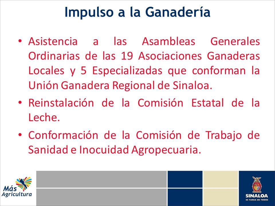 Impulso a la Ganadería Asistencia a las Asambleas Generales Ordinarias de las 19 Asociaciones Ganaderas Locales y 5 Especializadas que conforman la Un