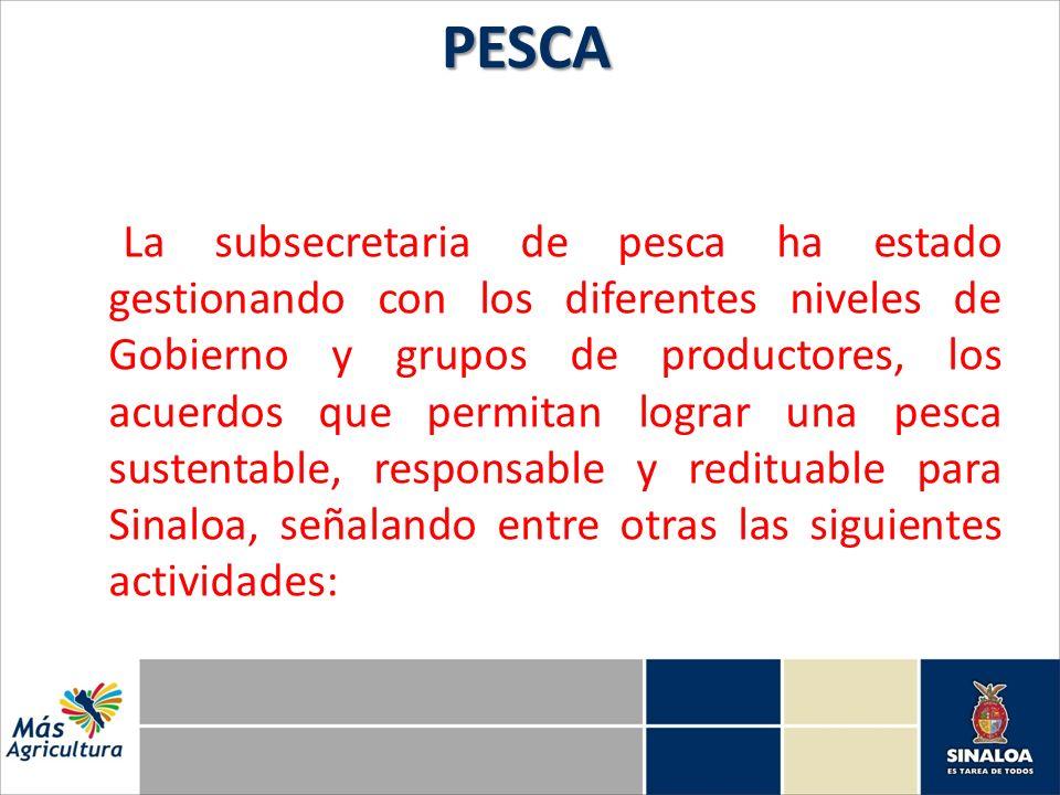 La subsecretaria de pesca ha estado gestionando con los diferentes niveles de Gobierno y grupos de productores, los acuerdos que permitan lograr una p