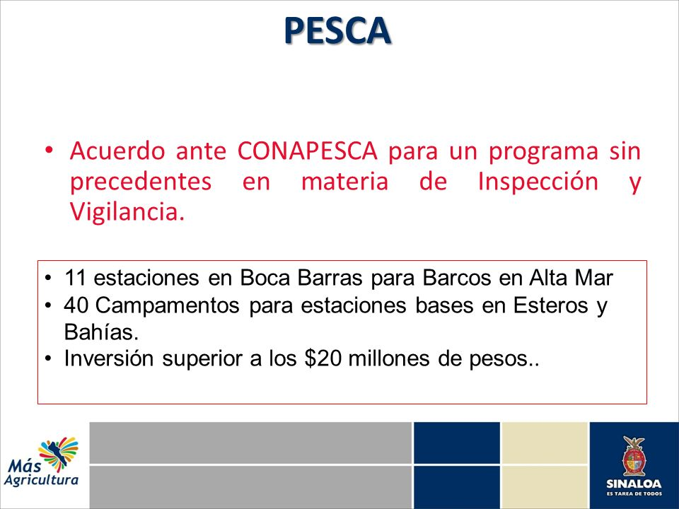 Acuerdo ante CONAPESCA para un programa sin precedentes en materia de Inspección y Vigilancia.PESCA 11 estaciones en Boca Barras para Barcos en Alta Mar 40 Campamentos para estaciones bases en Esteros y Bahías.