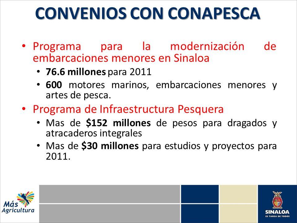 Programa para la modernización de embarcaciones menores en Sinaloa 76.6 millones para 2011 600 motores marinos, embarcaciones menores y artes de pesca.