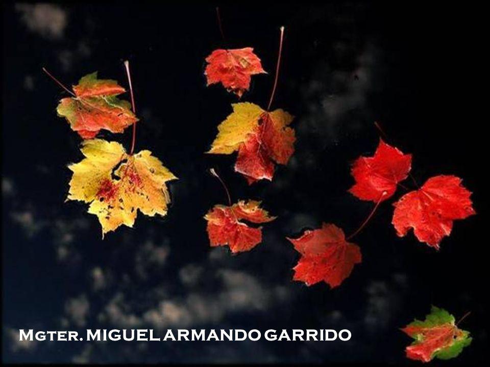 Fin Mgter. MIGUEL ARMANDO GARRIDO