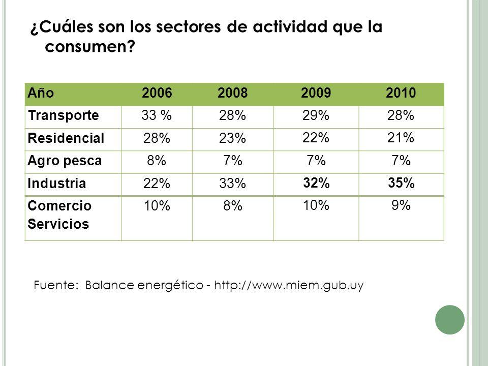 ¿Cuáles son los sectores de actividad que la consumen.