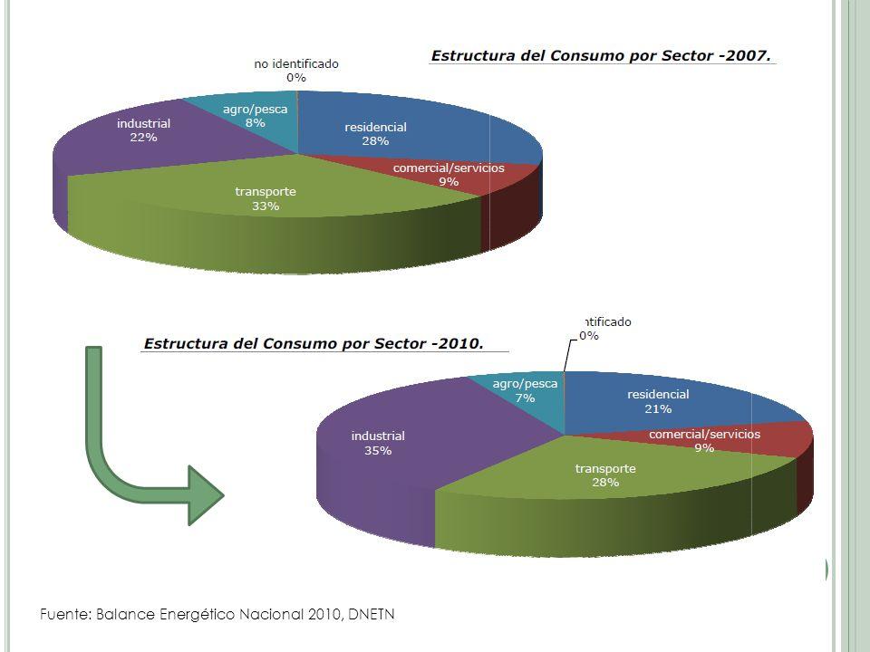 Fuente: Balance Energético Nacional 2010, DNETN
