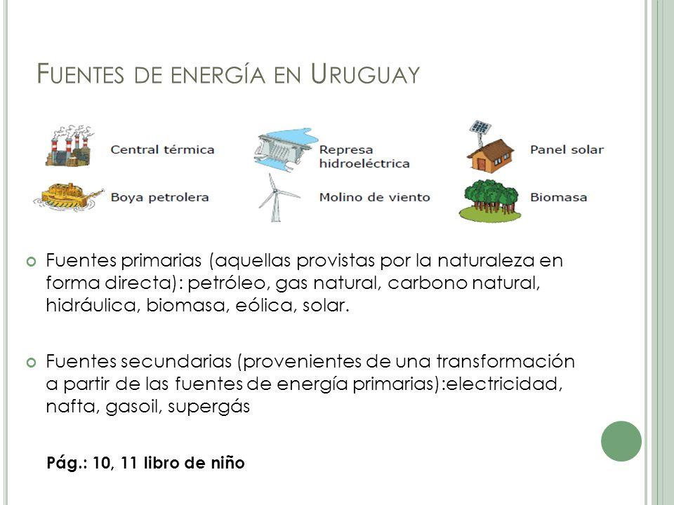 F UENTES DE ENERGÍA EN U RUGUAY Fuentes primarias (aquellas provistas por la naturaleza en forma directa): petróleo, gas natural, carbono natural, hidráulica, biomasa, eólica, solar.