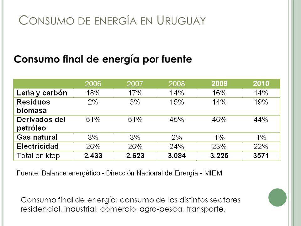 C ONSUMO DE ENERGÍA EN U RUGUAY Consumo final de energía por fuente Consumo final de energía: consumo de los distintos sectores residencial, industrial, comercio, agro-pesca, transporte.