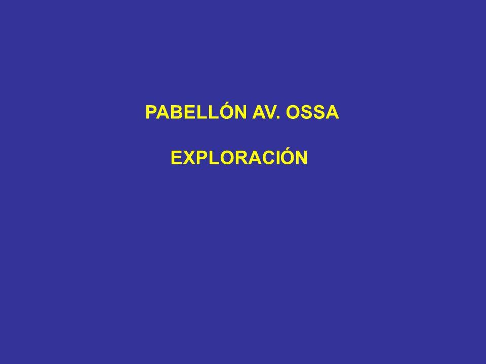 PABELLÓN AV. OSSA EXPLORACIÓN