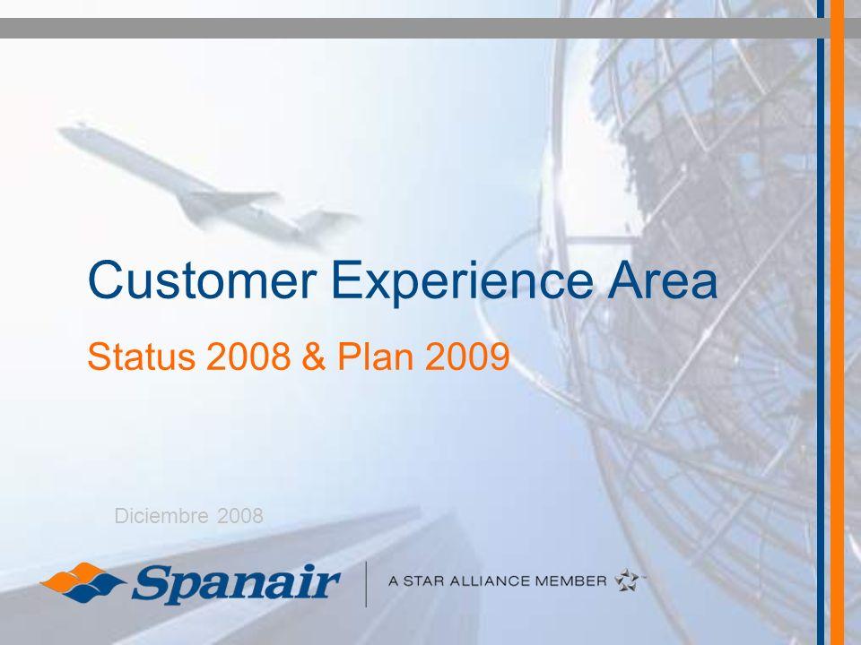 Customer Experience Area Status 2008 & Plan 2009 Diciembre 2008