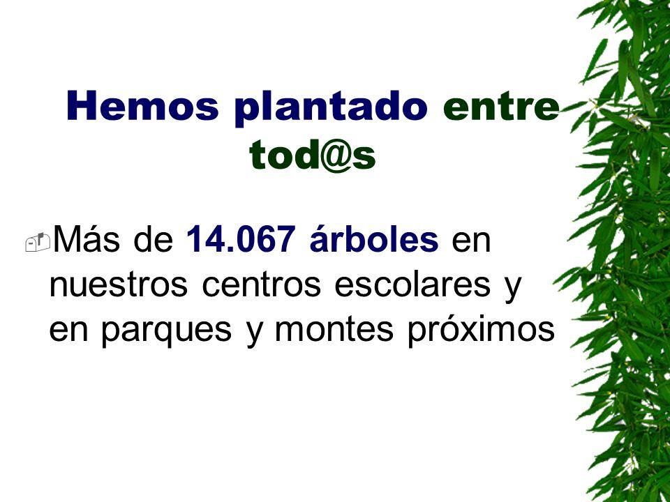 Hemos plantado entre tod@s Más de 14.067 árboles en nuestros centros escolares y en parques y montes próximos
