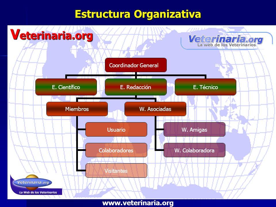 Estructura Organizativa V eterinaria.org www.veterinaria.org