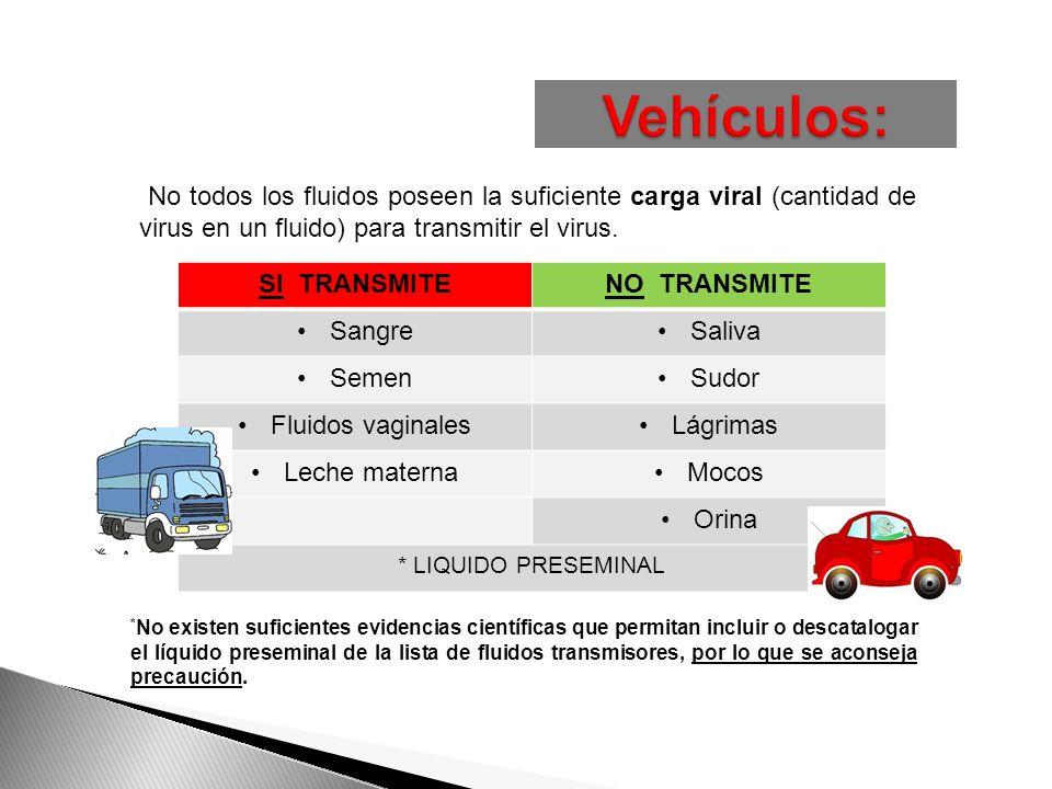 No todos los fluidos poseen la suficiente carga viral (cantidad de virus en un fluido) para transmitir el virus. www.sensasexus.com SI TRANSMITENO TRA