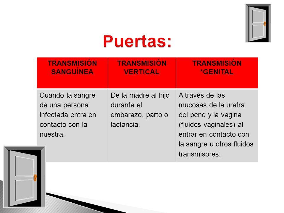 www.sensasexus.com TRANSMISIÓN SANGUÍNEA TRANSMISIÓN VERTICAL TRANSMISIÓN *GENITAL Cuando la sangre de una persona infectada entra en contacto con la