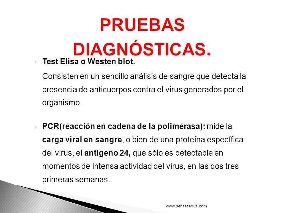 Test Elisa o Westen blot. Consisten en un sencillo análisis de sangre que detecta la presencia de anticuerpos contra el virus generados por el organis
