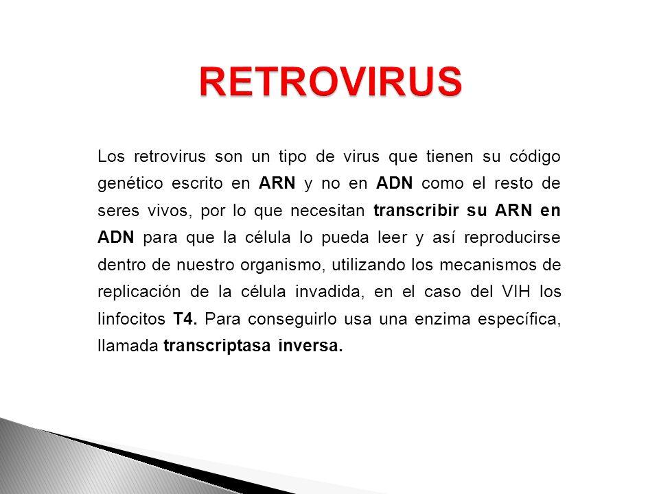 Los retrovirus son un tipo de virus que tienen su código genético escrito en ARN y no en ADN como el resto de seres vivos, por lo que necesitan transc