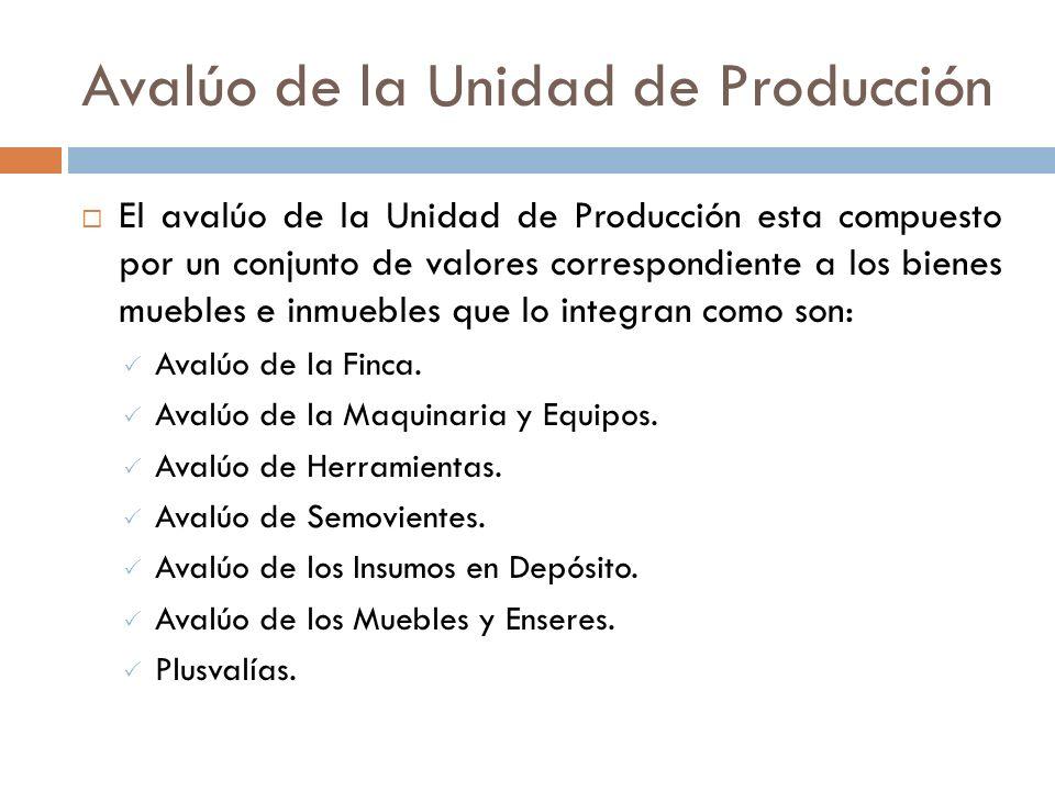 AVALUO DE LA UNIDAD DE PRODUCCION
