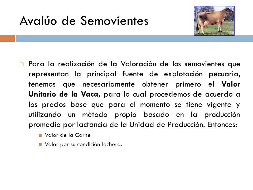 Movimiento del Rebaño COMPRASNAC.MORTALIDADVENTASINVENTARIO FINAL Carga Animal Vaca Novilla Toro Maute Becerra Becerro Vaca Novilla Mautas Becerra Tor