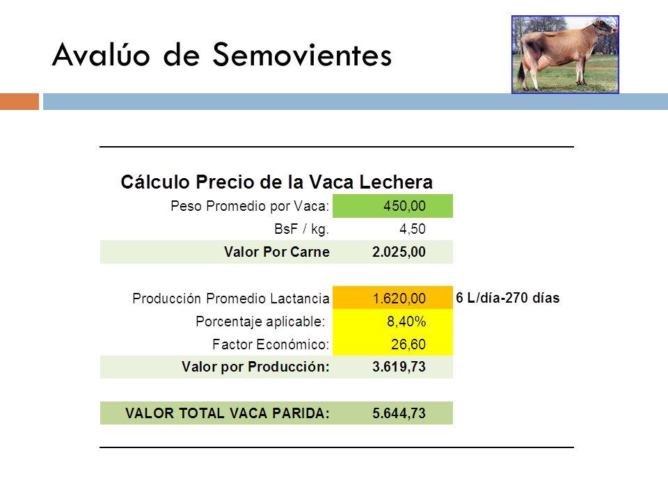 Avalúo de Semovientes VALOR POR SU PRODUCCION DE LECHE El valor de la leche actualmente está regulado por el ejecutivo nacional mediante Decreto publi